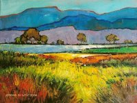 Oil on Stretched Canvas  Size: (405x305x20)mm,  Unframed  SOLD 2009
