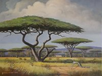 Oil on Stretched CanvasSize: (610x455x18)mm Frame: (776X571X30)mmSOLD 2012 SOUTH AFRICA