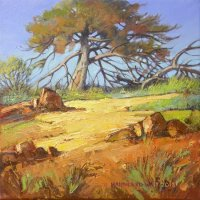 Oil on Stretched CanvasSize: (254x254x18)mmFrame: (350x350x35)mmSOLD 2014 (Franschhoek Art House)